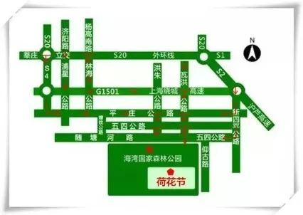 2018上海海湾森林荷花节时间 门票 交通