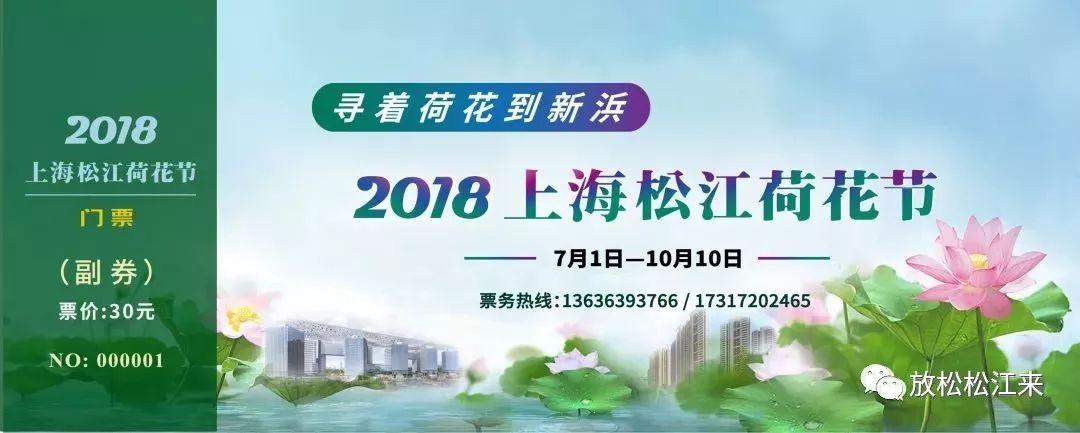 2018上海松江荷花节7月开幕 |附购票方式