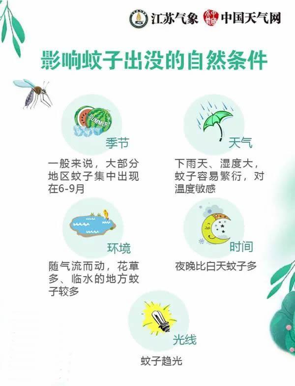 全国首个蚊子预报发布 如何查询所在区域蚊子指数?