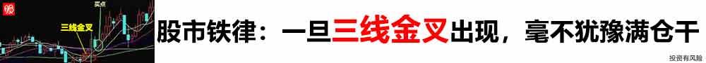 甄子丹《叶问4》曝国际版海报 内地档期