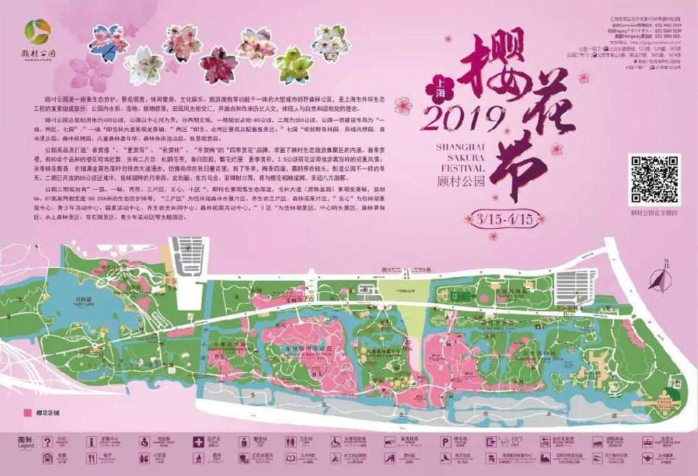 2019上海樱花节开幕(五大赏樱地 活动安排 交通指南
