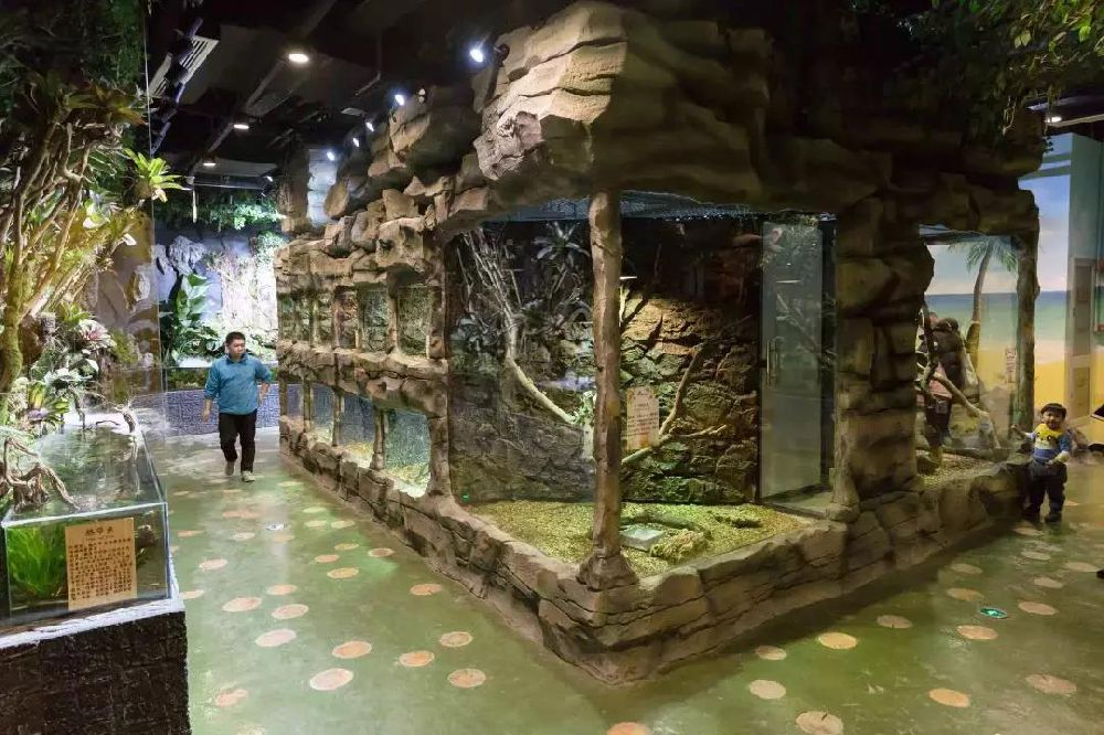 上海茉莉动物园游玩攻略(门票+地点+交通)