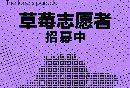2017天津草莓音乐节志