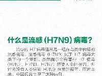 2017年1月H7N9禽流感最新消息:全国感