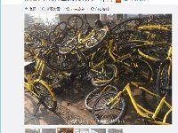"""北京榴乡桥共享单车""""坟场""""直播:大量小"""