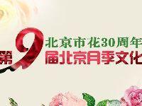 2017第九届北京月季文化节时间地点活动