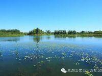 翠湖国家城市湿地公园预约入口、开放时