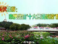 """北京城区消夏公园好去处 """"十大赏荷纳凉"""
