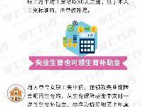 2019年湖南省城镇职工生育保险办法(图解