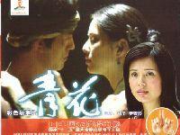 2017年6月4日广州图书馆无障碍电影欣赏