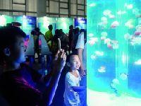 2017广东科学中心推水母主题展 为期3个
