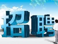 2017安徽特岗教师招聘6月19日开始报名(