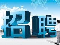 """2017合肥""""三支一扶""""招募1211名毕业生"""