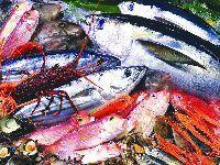 杭州有哪些海鲜批发市场