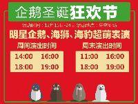 2017南京21世纪太阳城圣诞节活动一览
