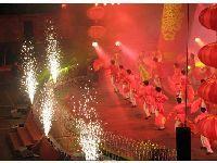 春节期间80余项节庆文化活动亮相濮阳