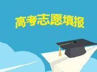 2017上海高考志愿填报时间及填报技巧