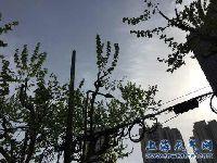 4月20日上海天气预报:阴到多云 午后短