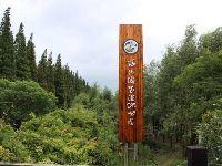 上海西沙国家湿地公园发布9月临时闭园公