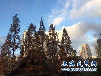 12月21日上海天气预报 多云到阴转阴有雨
