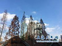 12月25日上海天气预报 阴到多云转阴有雨