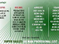 2018世界杯尼日利亚队阵容:尼日利亚世界