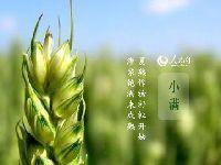5月21日:今日小满 夏季闷热潮湿天气将要