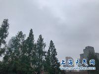 5月22日上海天气预报:北部短时小雨转雷
