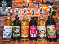 2018首届环球港啤酒节6月1日开幕 连嗨三