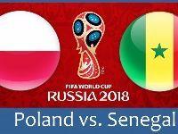 世界杯波兰vs塞内加尔比分预测+首发阵容