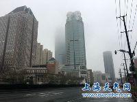 1月6日上海天气预报 小雨转阴天