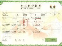 上海正式启用第六版出生医学证明 沪上各