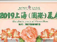 2019上海植物园国际花展攻略 (时间+门票