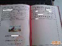 深圳各区小一初一学位申请材料一览