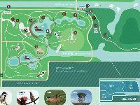 福田红树林生态公园观鸟攻略