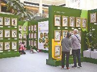 深圳植物科普展开幕 免费展至4月下旬