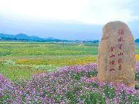 2019春节深圳适合赏花的地方推荐