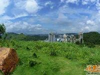深圳适合野餐的公园 附装备/美食全攻略