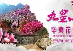 四川第八期花卉观赏指数发布 牡丹杜鹃辛夷花迎来最佳观赏期
