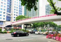 广州东风路福今路新天桥9月18日起试通行(图)