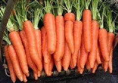 胡萝卜的功效与禁忌
