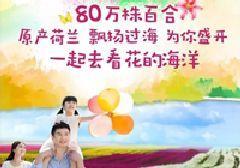 2017苏州太湖百合花节(时间+地点+亮点)