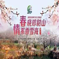 2017年苏州光福梅花节(时间+地点+亮点)