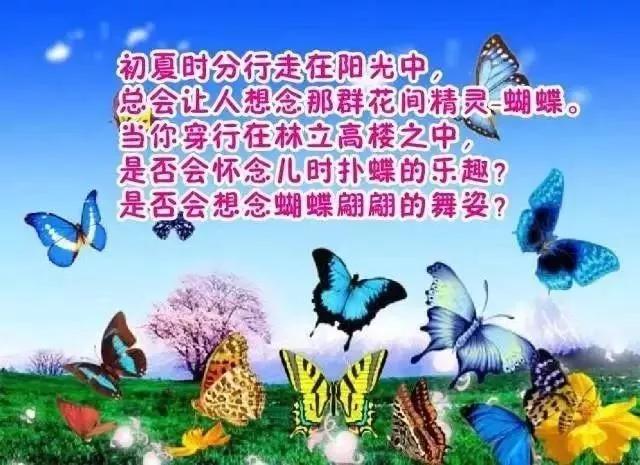 2018张家港初见香草园蝴蝶谷(开园时间+门票
