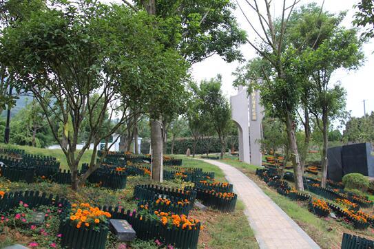 2019苏州树葬集体共祭活动(时间 报名登记 补贴标准)