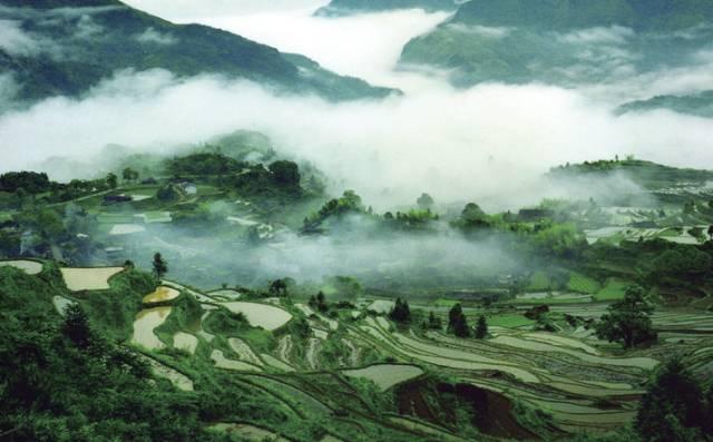 温州·南麂岛   贝藻王国图片