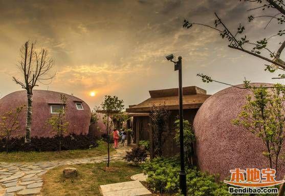 ... 余晖还未完全褪去,散布在云顶的蛋屋却美得像童话