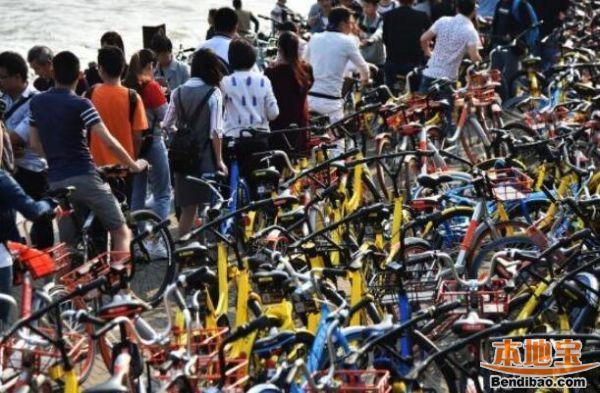 深圳湾公园周末、节假日自行车禁入 踩单车的小伙伴注意了