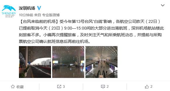 """受台风""""天鸽""""影响 深圳机场航班停运情况汇总"""