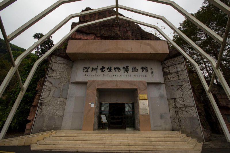 仙湖植物园,古生物博物馆